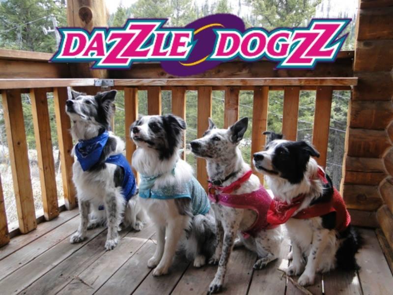 Dazzle Dogzz